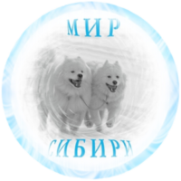 http://rodinoved.ru/wp-content/uploads/2016/07/cropped-cropped-cropped-Avatar12_5-e1509645889615.png