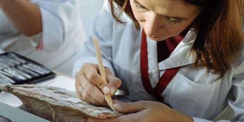 Архангельская область, реставрация, летняя школа