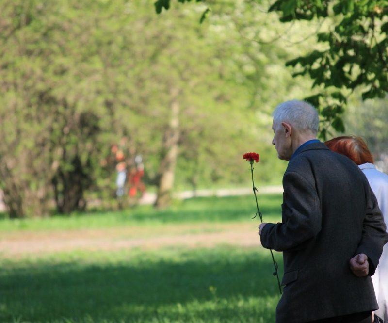 Великая Отечественная Война, ветераны, Вторая мировая война, День Победы, история, память